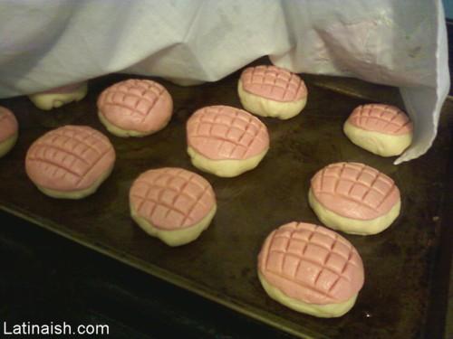 conchas dough