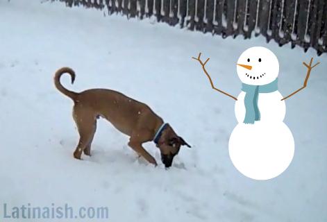 snowdaypic