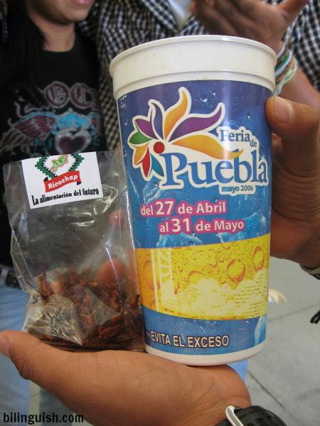 Feria de Puebla - chapulines y  cerveza- alimentacion del futuro