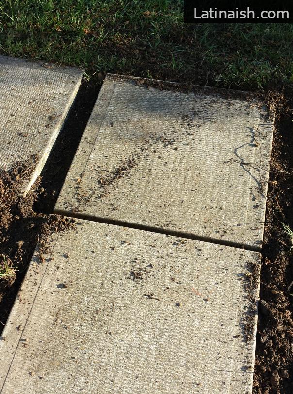 sidewalk-straight