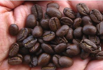 directo-cafe