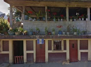 perro2-tectitan-guatemala